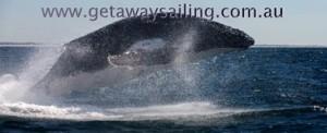 Getaway Sailing2._DAR9653